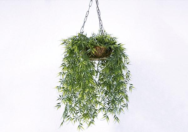 askıda bitki yetiştirme